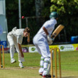 Cricket Game Action — Stock Photo