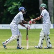 Stock Photo: Cricket 1st Teams High Schools