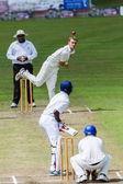 Kriket oyunu eylem — Stok fotoğraf