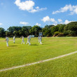 Постер, плакат: Cricket Game Grounds Players Batsmen