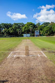 Cricket Pitch Wickets Sports Ground — Stock Photo