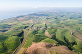 Air Birds Eye View Sugarcane Fields Highway — Stock Photo