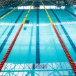 Olympic Swimming Pool Lanes — Stock Photo