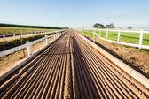 Horse Racing Sand Training Track — Foto Stock