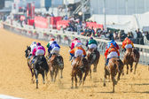 Horse Racing Action — Stock Photo