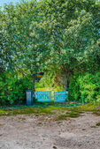 Vibrant colored fence — Stock Photo
