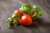 Tomatoes and basil on a wood table — Stock Photo