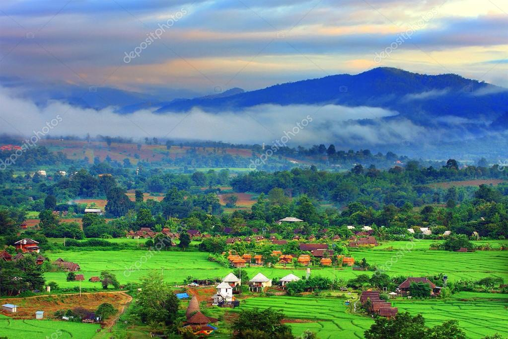 Rice field with small resort in sunrise at Pai, Marhongsorn, Thailand ...