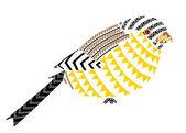 Bird Native patterns art cute painting — Photo