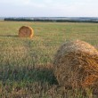 Stock Photo: Haystacks field
