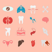 Icons of internal human organs Flat design — Stock Vector