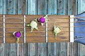 Flor de amor de guitarra — Stockfoto