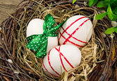 Easter eggs in nest. — Stockfoto