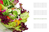 Vegetable salad in bowl isolated with space for text. Background — Stock Photo