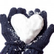 Stock Photo: Lady's gloves and snow heart