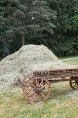 Wagon and hay — Stock Photo