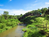 Natural scenic view point of river and the greenery hill — Stock Photo