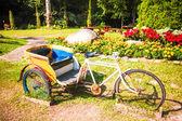 Local three wheel in the flower garden — Stock Photo