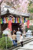 Spring spot in Nara at the ancient temple, 'Hasedera' with natural park to relax and enjoy on April 13, 2014 at Hasedera,Nara, Japan. — Stock Photo