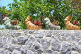 Worm shaped tree pots on the rock wall — Stock Photo