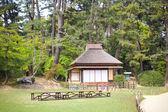 Korakuen garden of Okayama, Japan. — Foto Stock