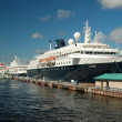 Cruise ship Minerva, St. Petersburg — Stock Photo
