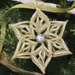 Christmas Star and Pine — Stock Photo