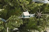 Christmas House and Pine — Stock Photo