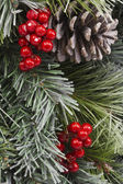 Traditional Christmas Pinecone and Berries — Stockfoto