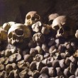 More Skulls and Bones — Stock Photo