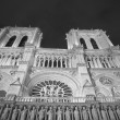 Notre Dame of Paris at Night — Stock Photo