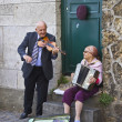Happy Senior Couple Playing Music — Photo