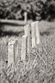 A Row of Unmarked Small Child Headstones Vertical — Stock Photo