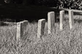 A Row of Unmarked Small Child Headstones Horizontal — Zdjęcie stockowe