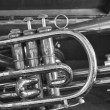 Stock Photo: Close Up of Trumpet in Case