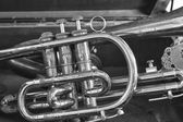 Close Up of a Trumpet in a Case — Stock Photo