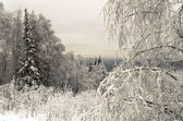 Winter in the mountains of the Urals — Stock Photo
