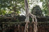 柬埔寨。吴哥窟. — 图库照片