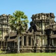 The temple of Angkor Wat, Siem Reap — Stock Photo #43514471