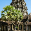 The temple of Angkor Wat, Siem Reap — Stock Photo #43514523