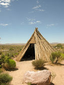 Dwelling of the native american indian — Photo