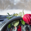 Red rose — Stock Photo #40117637