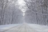 Vinterväg冬天路 — Stockfoto
