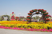 DUBAI, UAE - JANUARY 20: Miracle Garden in Dubai, on January 20, — Stockfoto