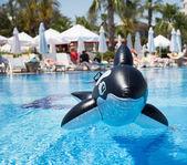 Nafukovací velryba — Stock fotografie