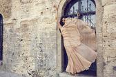 Beautiful woman with dark hair in luxurious silk dress — Stock Photo
