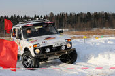 Winter racing — Stock Photo