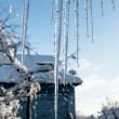 Stock Photo: Icicles