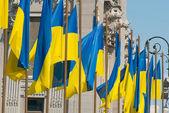 Ukraiński flagi — Zdjęcie stockowe