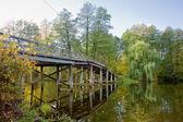 Il ponticello di legno sopra il lago della foresta — Foto Stock